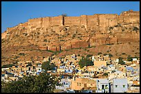 Houses and Mehrangarh Fort, morning. Jodhpur, Rajasthan, India