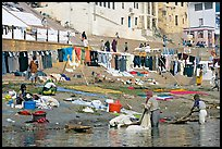 Laundry washed and hanged on Ganges riverbank. Varanasi, Uttar Pradesh, India ( color)