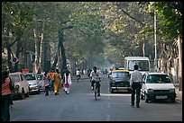 Tree-lined street, Colaba. Mumbai, Maharashtra, India ( color)