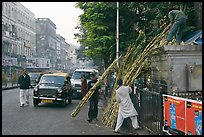 Men loading sugar cane on a street booth. Mumbai, Maharashtra, India ( color)