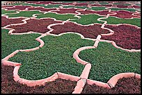 Geometric patterns in Anguri Bagh garden, Agra Fort. Agra, Uttar Pradesh, India ( color)