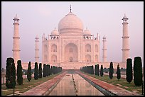 Taj Mahal reflected in watercourse,  sunrise. Agra, Uttar Pradesh, India ( color)