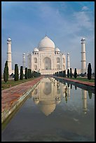 Taj Mahal reflected in basin, morning. Agra, Uttar Pradesh, India ( color)