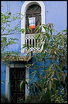 Yard and blue facade, Panaji. Goa, India (color)