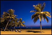 People sitting on bench below palm trees at twilight, Miramar Beach. Goa, India