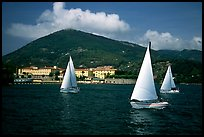 Sailboats cruising, La Spezia. Liguria, Italy ( color)