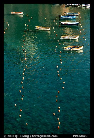 Buoy lines and fishing boats seen from above, Vernazza. Cinque Terre, Liguria, Italy (color)