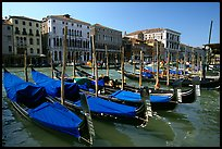 Row of gondolas covered with blue tarps, the Grand Canal. Venice, Veneto, Italy (color)