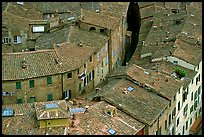 Rooftops seen from Torre del Mangia. Siena, Tuscany, Italy