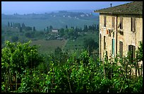 Gardens and countryside on the periphery of the town. San Gimignano, Tuscany, Italy (color)