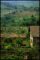 Gardens and contryside  on the periphery of the town. San Gimignano, Tuscany, Italy ( color)