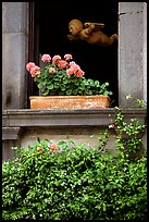 Window with flowers. Orvieto, Umbria ( color)