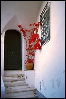 Door, red flowers, white walls, Positano. Amalfi Coast, Campania, Italy (color)