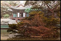Buyongji, pond, trees, and canvas, Changdeok Palace. Seoul, South Korea