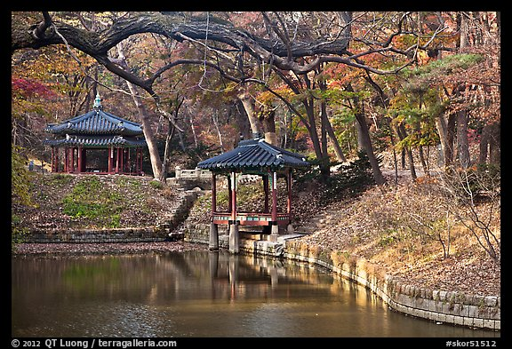 Pond in autumn, Changdeokgung Palace gardens. Seoul, South Korea (color)