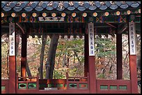 Gazebo in autumn, Ongnyucheong, Changdeokgung gardens,. Seoul, South Korea