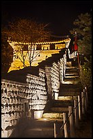 Steep section of wall at night, Namchi, Suwon Hwaseong Fortress. South Korea ( color)