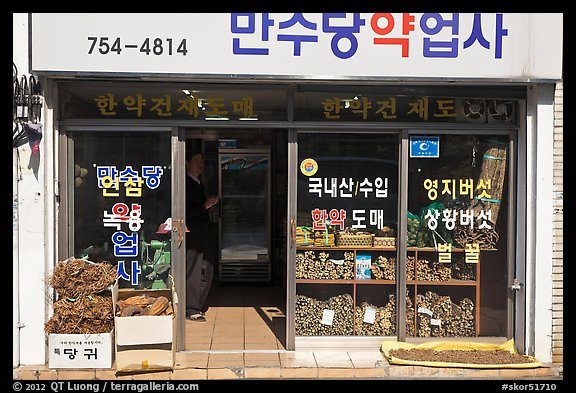 Roots in traditional medicine storefront. Daegu, South Korea