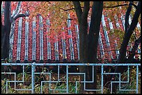 Fence with Buddhist symbol, and roof with fallen leaves, Bulguksa. Gyeongju, South Korea ( color)