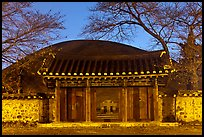 Royal tomb of King Michu of Silla by night. Gyeongju, South Korea (color)