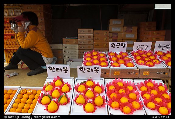 Tangerine fruit stand, Jeju. Jeju Island, South Korea