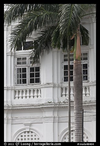 Palm and facade detail, city hall. George Town, Penang, Malaysia