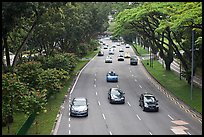 Expressway bordered by trees. Singapore ( color)