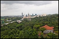 Mount Faber Park. Singapore ( color)