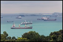 Large cargo ships, Singapore Strait. Singapore ( color)