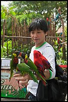 Man holding many parakeets on arm, Sentosa Island. Singapore ( color)