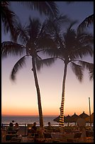 Outdoor restaurant with palm trees at sunset, Nuevo Vallarta, Nayarit. Jalisco, Mexico ( color)