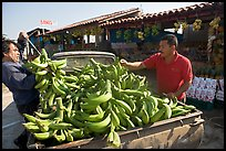 Man unloading bananas from the back of a truck. Mexico ( color)