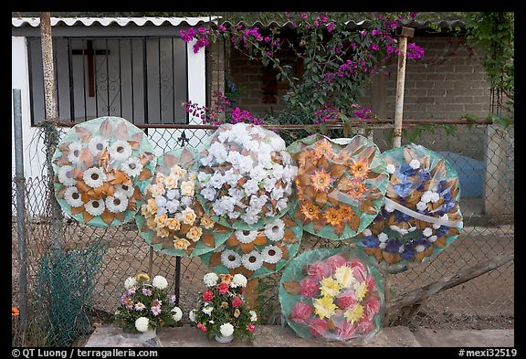 Floral wheels in a cemetery. Mexico (color)