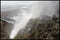 Jet of water blowing up 30 meters, La Bufadora. Baja California, Mexico (color)