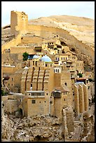 Fortified walls of the Mar Saba Monastery. West Bank, Occupied Territories (Israel) (color)
