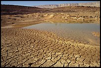 Cracked mud and shallow pond, near Mitzpe Ramon. Negev Desert, Israel (color)