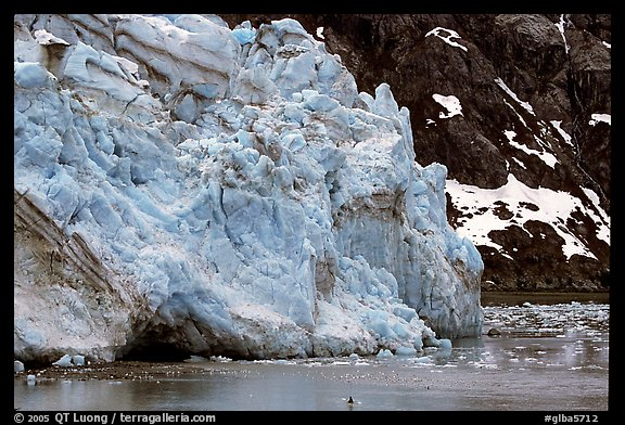 Kayaker dwarfed by Lamplugh Glacier. Glacier Bay National Park, Alaska