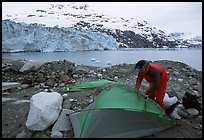 Setting up a tent in front of Lamplugh Glacier. Glacier Bay National Park, Alaska (color)