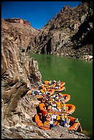 Rafts moored near month of Clear Creek canyon. Grand Canyon National Park, Arizona