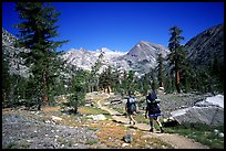 Backpackers on the John Muir Trail. Kings Canyon National Park, California (color)