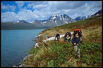 Backpackers travelling cross-country on the shore of Turquoise Lake. Lake Clark National Park, Alaska