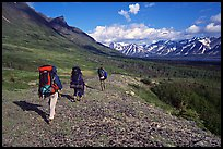 Backpackers with big  packs walking on the tundra. Lake Clark National Park, Alaska (color)