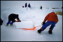 Building an igloo, which offers a very good weather protection.. Denali, Alaska (color)