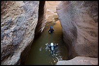 Canyoneers swim in Pine Creek Canyon. Zion National Park, Utah ( color)