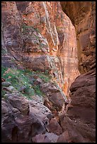 Hikers dwarfed by canyon walls, Pine Creek Canyon. Zion National Park, Utah ( color)