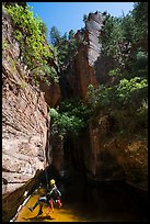 Canyoneer about to land in pool in open section of Das Boot. Zion National Park, Utah ( color)