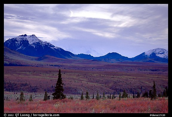 Alaska Range at dusk from near Savage River. Denali National Park, Alaska, USA.