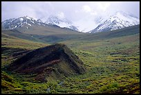 Hills and mountains near Sable Pass. Denali National Park ( color)