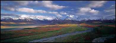 Mountain landscape with clouds. Denali  National Park (Panoramic color)