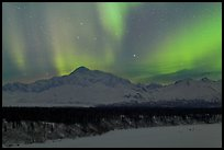 Northern lights above Mt McKinley. Denali National Park, Alaska, USA. (color)